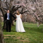 Capitol Inspiration: Cherry Blossom Bridal Shoot