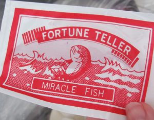 fortunefish