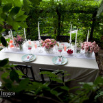 Capitol Inspiration: Romantic Pink & Teal Bridal Shower Design