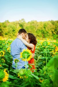 potomac maryland weddings engagement photographer sunflower field pictures (3)