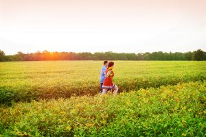 potomac maryland weddings engagement photographer sunflower field pictures (1)