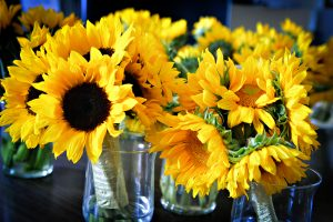 summer garden outdoor northern virginia alexandria wedding venue sunflowers (2)