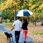 Capitol Romance: Helen & Glenn's Dramatic, Stormy Northern Virginia Engagement Sess