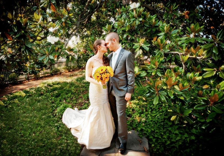 Capitol wedding lauren tom 39 s summer sunflower wedding in old town alexandria va capitol - Practical tips for gardening in june ...