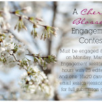 Giveaway: Win a Cherry Blossom Portrait Session with Jessica Maida Photography
