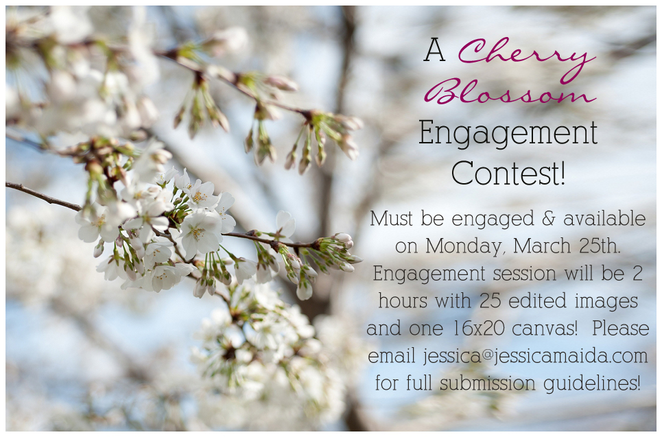 cherry blossom engagement session giveaway