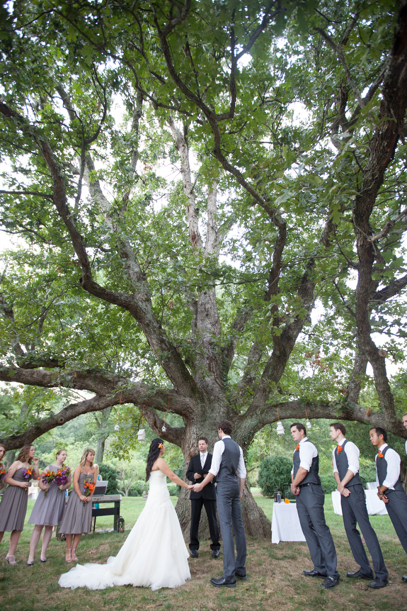 diy outdoors northern virginia wedding big tree pictures
