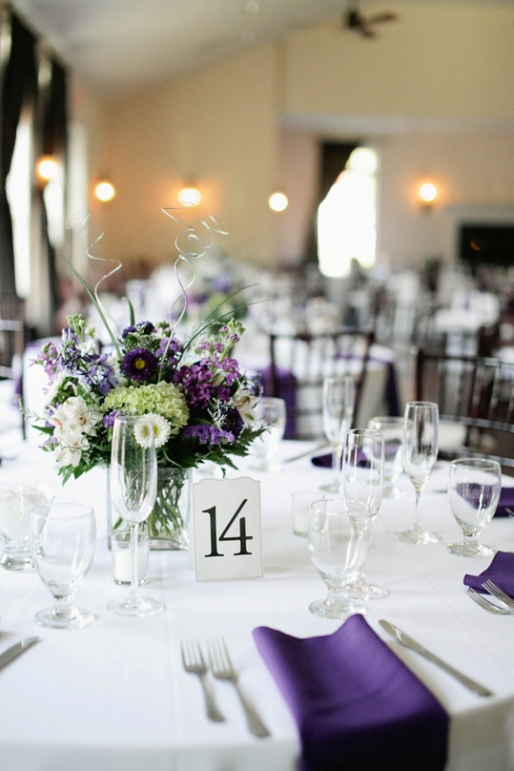 Capitol wedding matt kristen s simple rustic purple