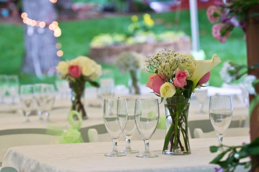 same sex LGBT backyard Virginia wedding