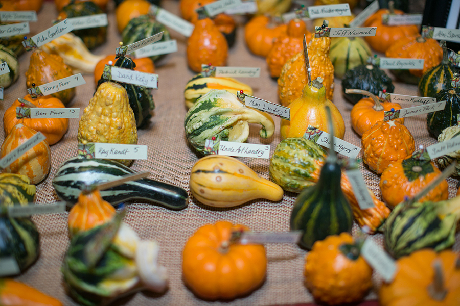 creative fall escort cards gourds