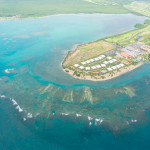 Capitol Inspiration: A Honeymoon Review of Vieques, Puerto Rico
