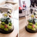 DIY Tutorial: How to Make Paper Strawberry Terrarium Centerpieces