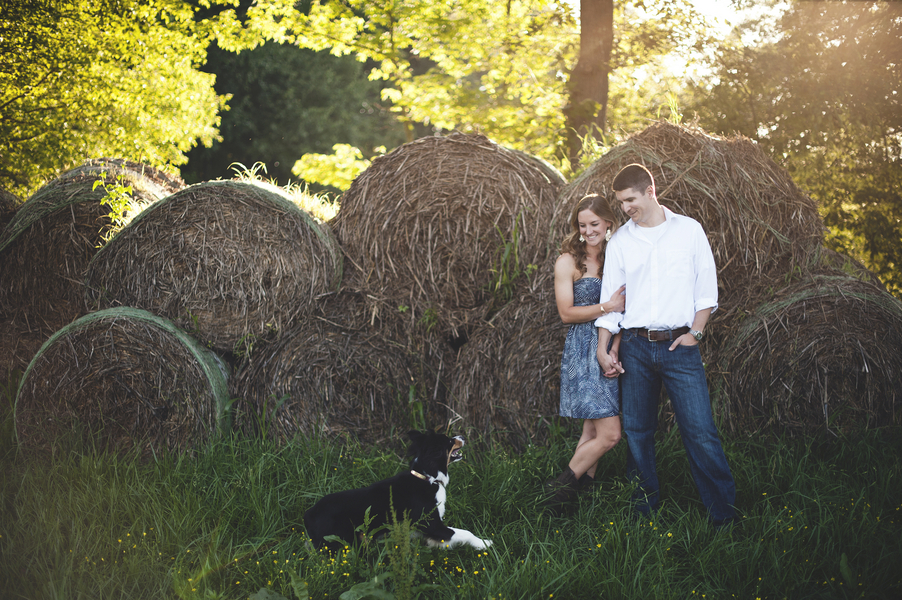 virginia farm engagement pictures (3)