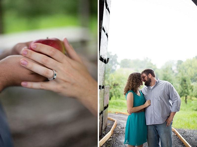 heysers farms maryland engagement pictures (1)