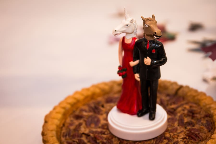 offbeat geeky Maryland wedding pictures (3)