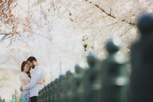 modern cherry blossom engagement pictures washington dc (8)