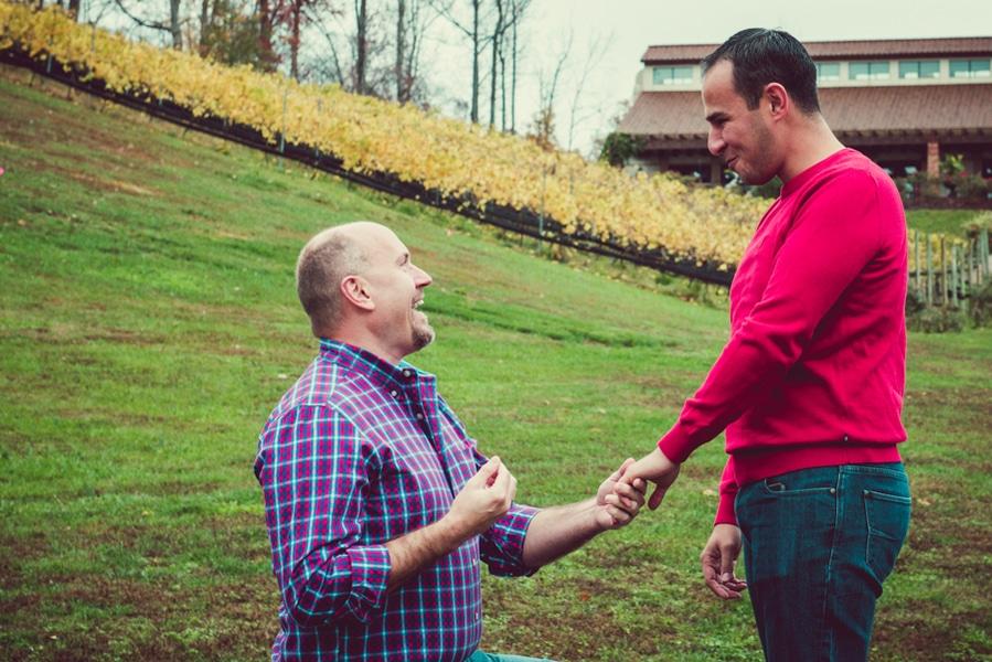 surprise virginia winery proposal same sex (2)