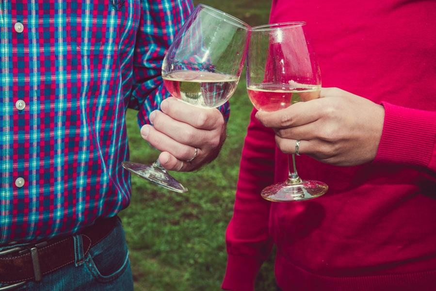 surprise virginia winery proposal same sex (8)
