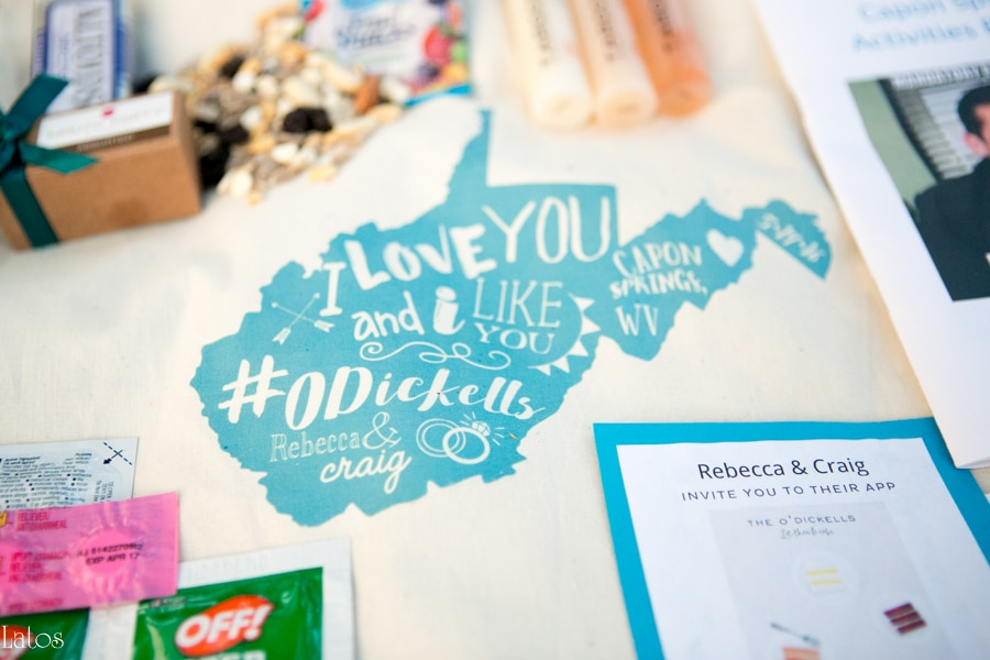fun stylish tv-themed parks and rec virginia camp wedding37