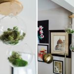DIY Tutorial: How to Make a DIY Hanging Airplant Terrarium