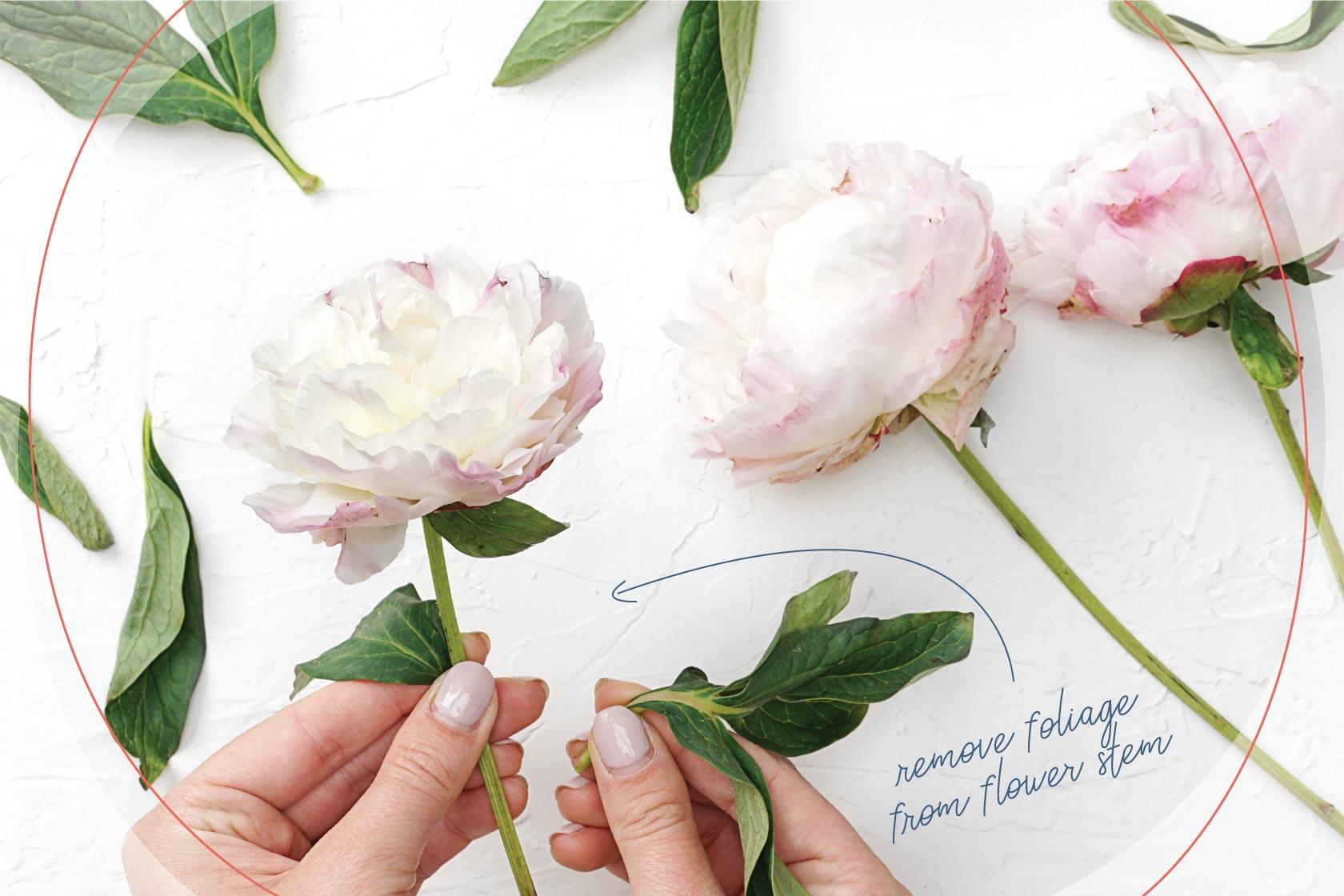 DIY Tutorial: How to Create a DIY Wedding Bouquet in 6 Easy Steps ...